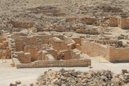 Mamszit - miasto nabatejskie, Pustynia Negev